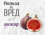 Все, что нужно знать о инжир: тех, кто не может съесть этот фрукт