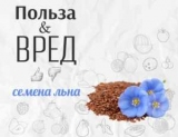 Все, что нужно знать о семенах льна: польза и вред семян льна (как в магазине